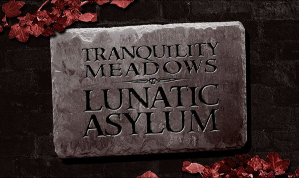 tranquility meadows lunatic asylum halloween party invitation - Names For A Halloween Party