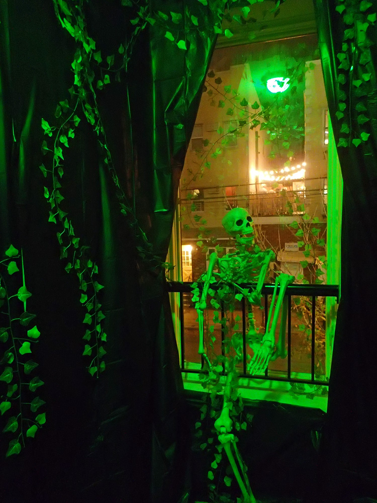 Front hallway with fake vines and skeleton