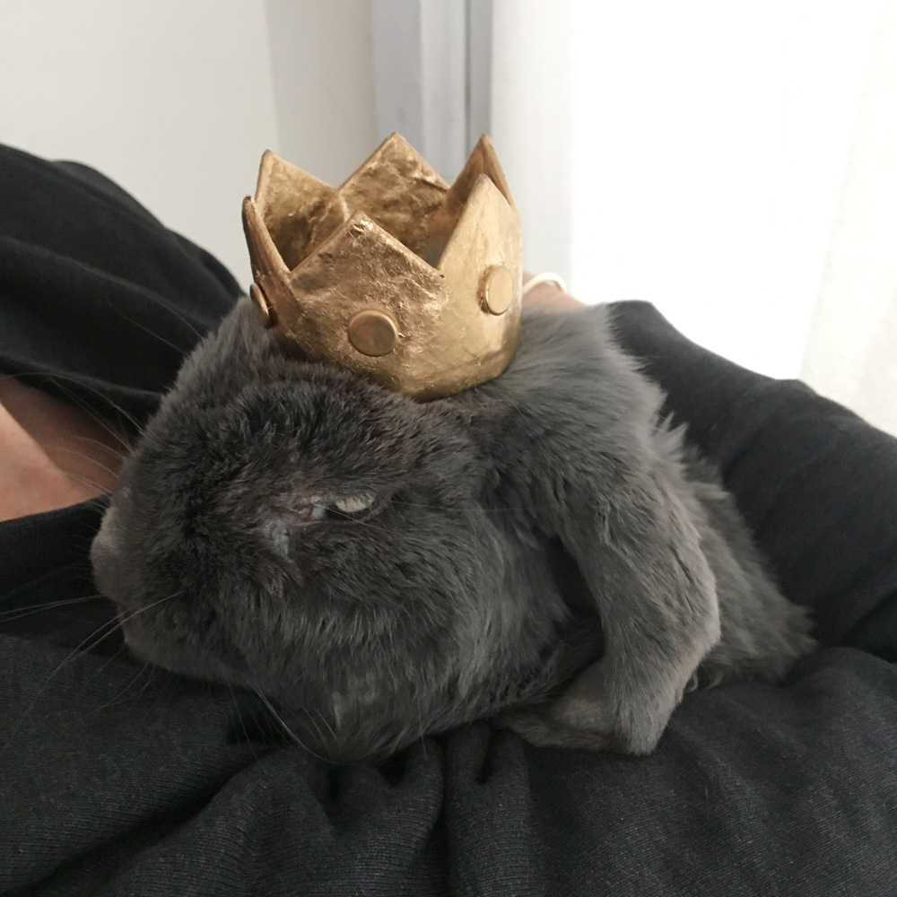 Tiny paper mache crown - Acide wearing the finished crown
